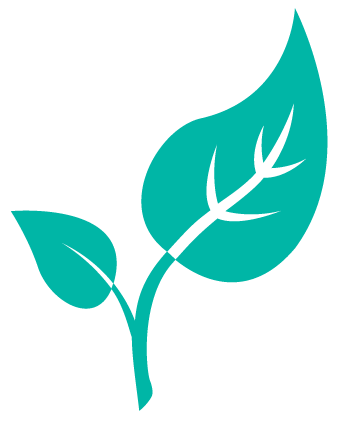 budding-leaves